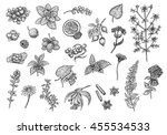 tea collection  fruits  herbs... | Shutterstock . vector #455534533
