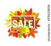 seasonal autumn sales... | Shutterstock .eps vector #455623834