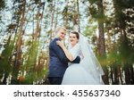 bride and groom at wedding day... | Shutterstock . vector #455637340