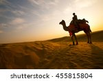 Silhouette Of Camel In The Tha...
