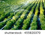 irrigation system in function... | Shutterstock . vector #455820370