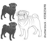 Stock vector set of vector images of pug isolated objects on a white background 455825698