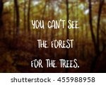 you can't see the forest for... | Shutterstock . vector #455988958