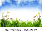 Spring scenery - stock photo