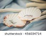 wedding sea shells | Shutterstock . vector #456034714