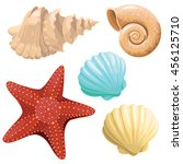 realistic vector starfish and... | Shutterstock .eps vector #456125710