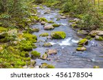 forest creek. water cascades... | Shutterstock . vector #456178504