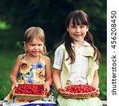 the children eating cherries in ... | Shutterstock . vector #456208450