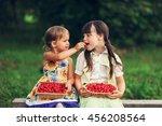 the children eating cherries in ... | Shutterstock . vector #456208564