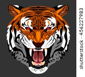 bared in a terrible rage tiger | Shutterstock . vector #456227983