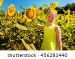 little girl playing in... | Shutterstock . vector #456281440