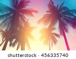 coconut tree at tropical coast... | Shutterstock . vector #456335740