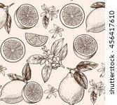 lemons  and flowers. vector... | Shutterstock .eps vector #456417610