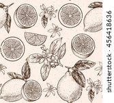 lemons  and flowers. vector... | Shutterstock .eps vector #456418636