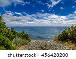 juniper spinney at the cliff... | Shutterstock . vector #456428200
