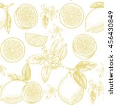 lemons  and flowers. vector... | Shutterstock .eps vector #456430849