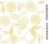 lemons  and flowers. vector... | Shutterstock .eps vector #456430849