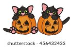 pair of black kitten peeking... | Shutterstock . vector #456432433