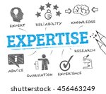 expertise. chart with keyword... | Shutterstock .eps vector #456463249