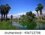 palm spring   Shutterstock . vector #456712738