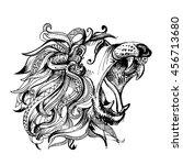 hand drawn vector illustration... | Shutterstock .eps vector #456713680