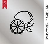 web line icon. lemon | Shutterstock .eps vector #456846439