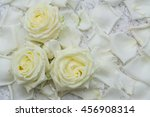 all of rose  stem  rose flowers'... | Shutterstock . vector #456908314