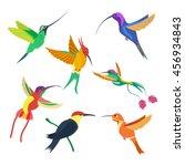 small bird hummingbird set...   Shutterstock .eps vector #456934843