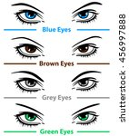vector woman eyes. design... | Shutterstock .eps vector #456997888