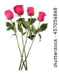 roses  four pink long stem... | Shutterstock . vector #457056868