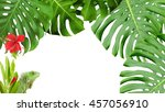 tropical scene with monstera ... | Shutterstock . vector #457056910