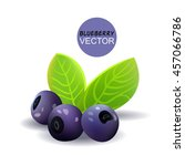 blueberry branch with leaves.... | Shutterstock .eps vector #457066786