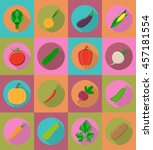 vegetables flat icons with the... | Shutterstock . vector #457181554
