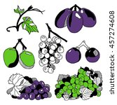 set of various grape. hand... | Shutterstock .eps vector #457274608