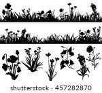silhouette of grass and plants  ...