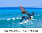 windsurfing and dolphin | Shutterstock . vector #457325683