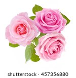 Stock photo beautiful rose flowers bunch isolated on white background 457356880