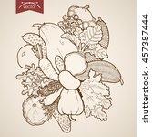 engraving vintage hand drawn... | Shutterstock .eps vector #457387444