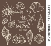 collection of seashell. hand... | Shutterstock .eps vector #457421659