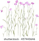 set of field poppy inspired... | Shutterstock . vector #457443646