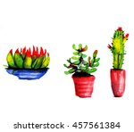 cute small cactuses in pots....   Shutterstock . vector #457561384