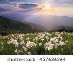 summer landscape in the... | Shutterstock . vector #457636264