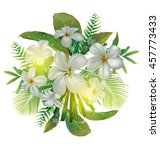 plumeria flower  bundle   Shutterstock .eps vector #457773433