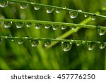 water drops on wet grass with... | Shutterstock . vector #457776250