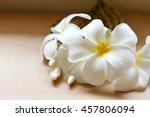 plumeria flowers fresh or... | Shutterstock . vector #457806094