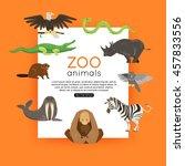 Wildlife Background.  Zoo...