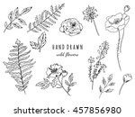 hand drawn floral set. graphic... | Shutterstock . vector #457856980
