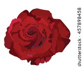 delicate red rose isolated.... | Shutterstock .eps vector #457898458
