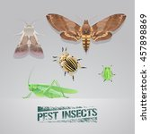 set of pest insects vector... | Shutterstock .eps vector #457898869