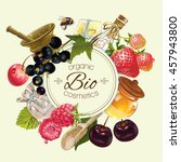 vector vintage fruit and berry... | Shutterstock .eps vector #457943800